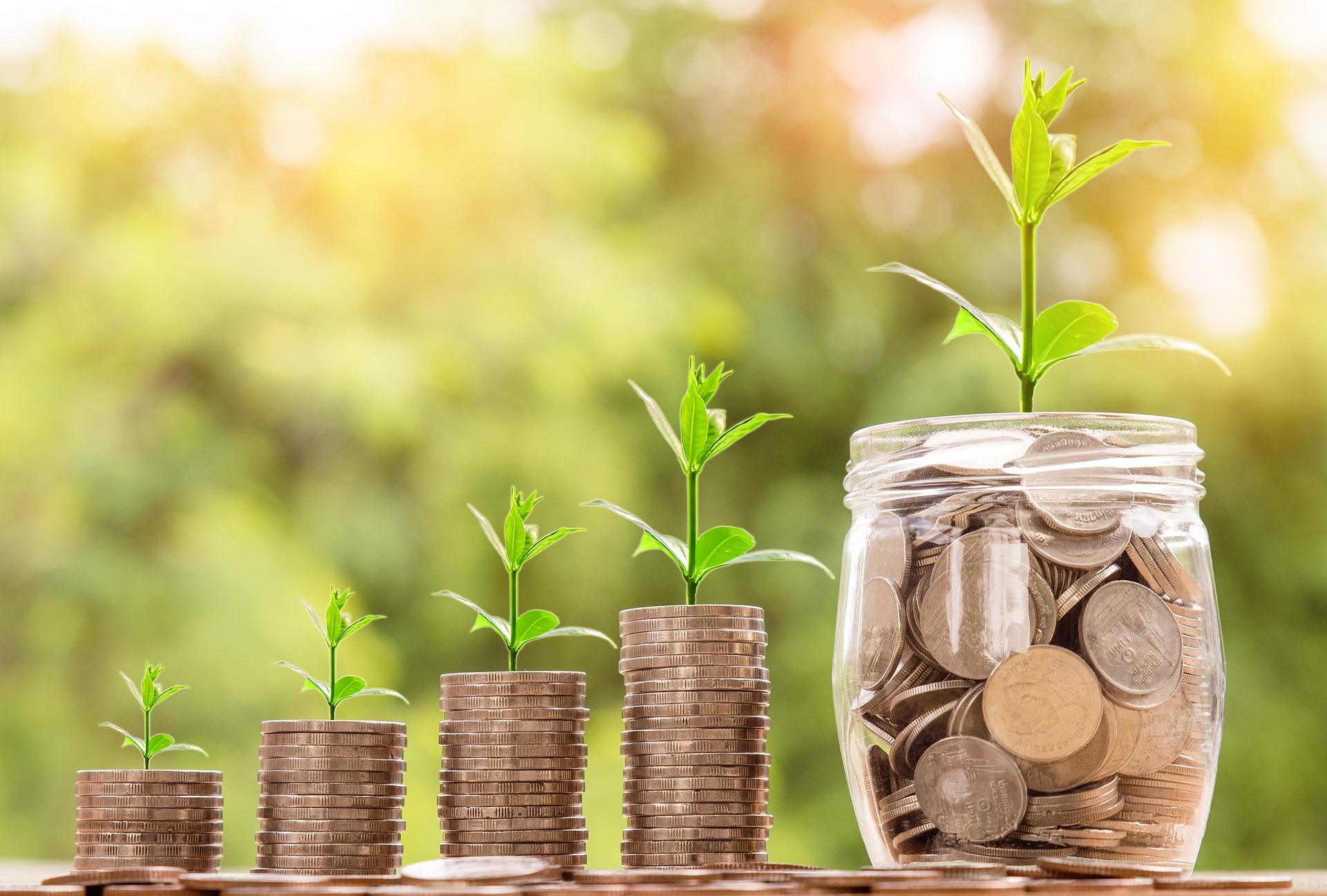 pénz opciók opció gyakorlási arány