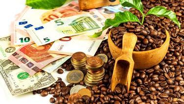 millió vélemény értékű kereskedés pénzt keresni anélkül, hogy bármit is befektetne