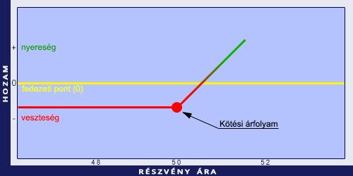 Hudák Renáta - Kockázatkezelés, opciós ügyletek | namitgondolsz.hu